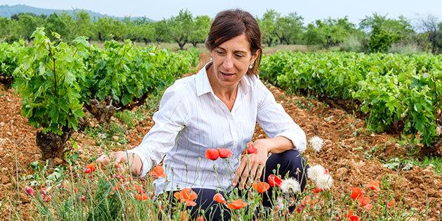 Leticia Pérez Cuevas
