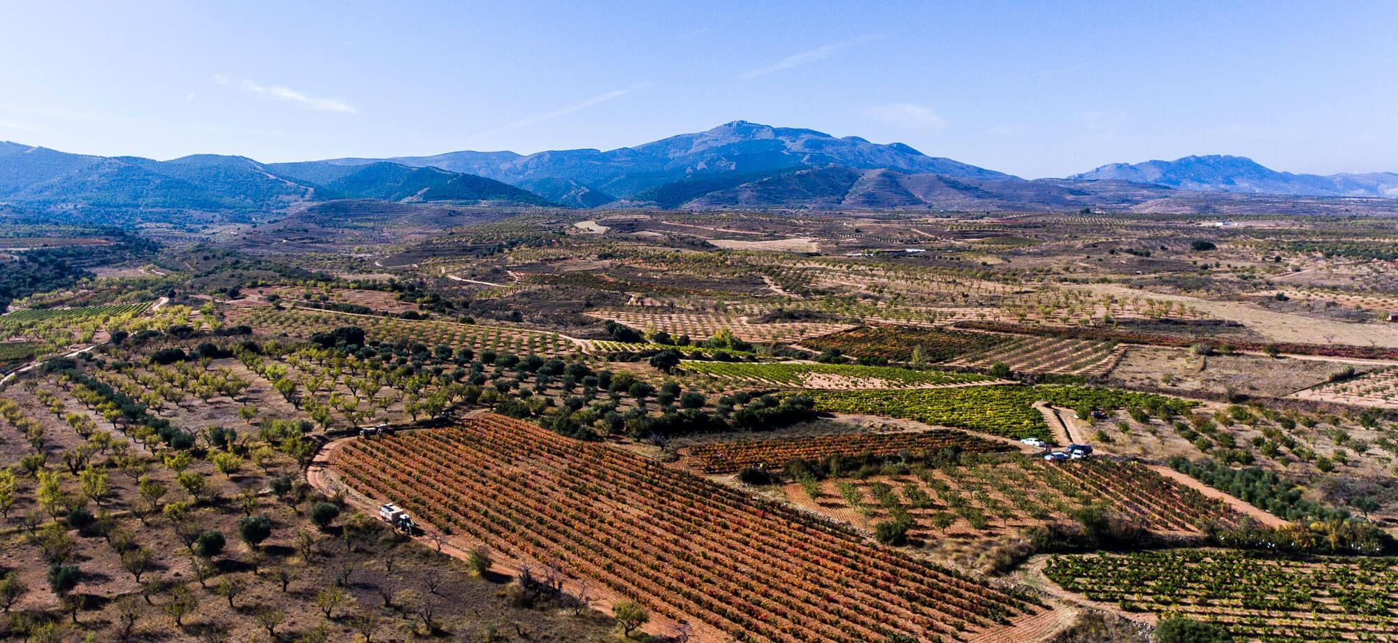 The Valle del Cidacos
