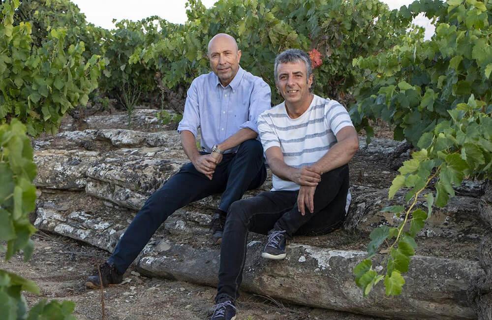 «Vinos Silenciosos», distinguido como el mejor libro de España en los Wine Challenge Merchant Awards