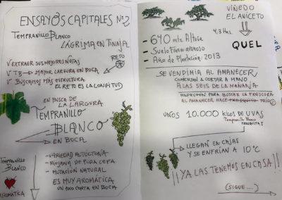 Cuaderno Ensayos Capitales Nº2
