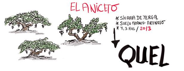 El Aniceto
